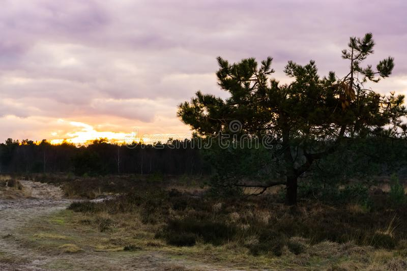 Sunset in a heather landscape, colorful colors in the sky and clouds stock photo
