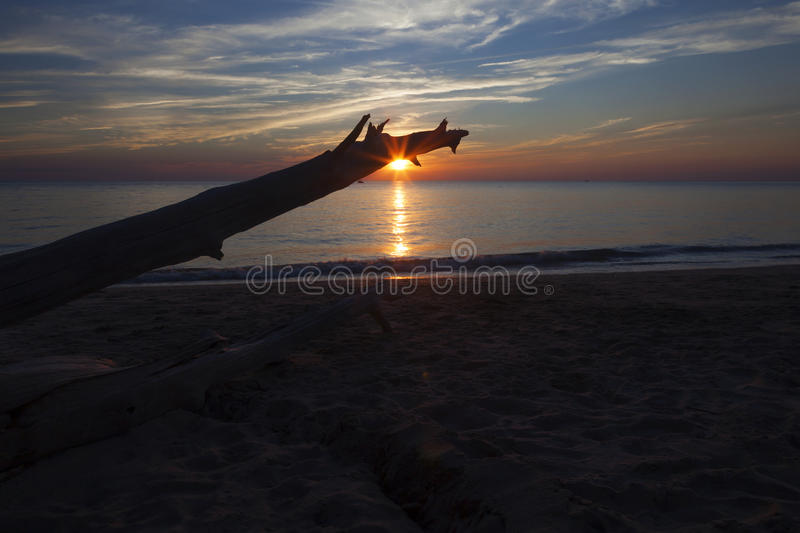Driftwood Sunset At Higbee Beach. Sunset at Higbee Beach under driftwood in New Jersey stock image