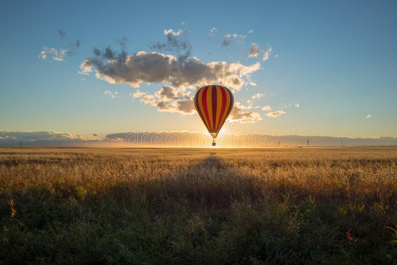Sunset and a hot air balloon lands in canola in Alberta prairies. Sunset and a hot air balloon lands in a canola fields in the Alberta prairies at sunset, Canada stock images