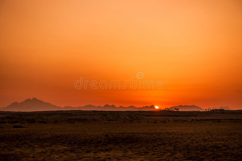 Sunset in Hurghada/Makadi Bay stock images