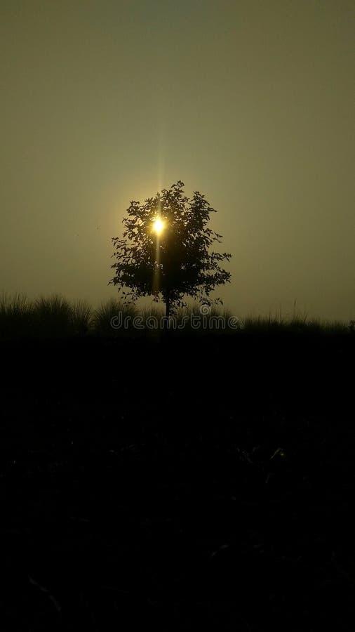 Sunset i Indien Uttar Pradesh Aligarh royaltyfria foton
