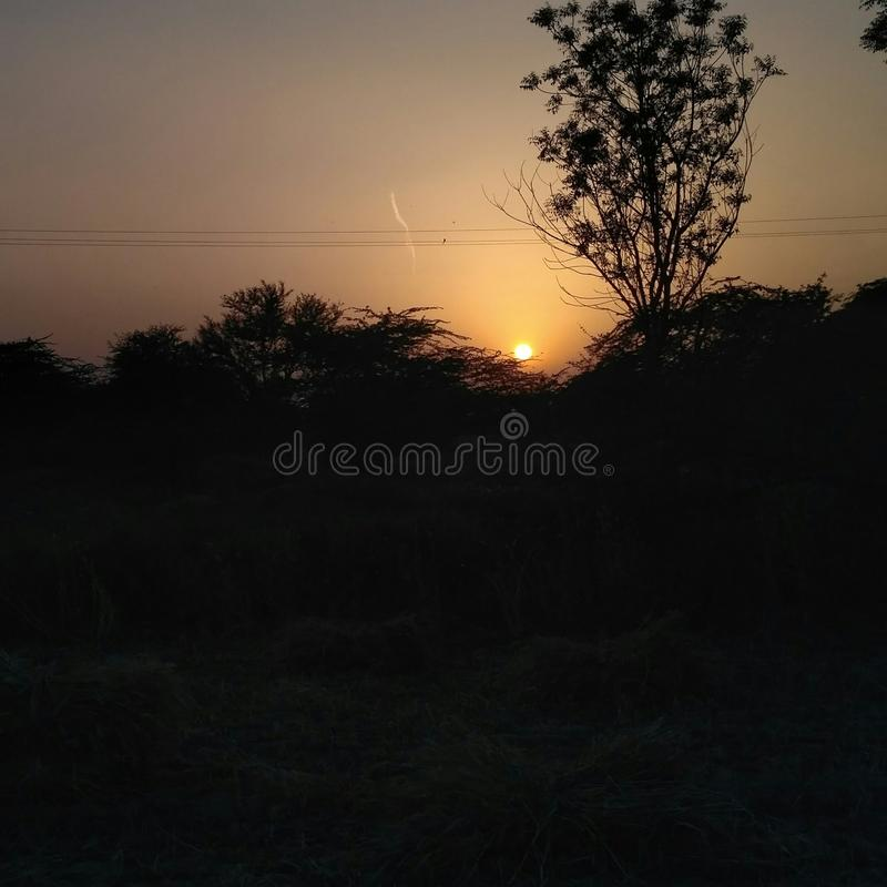 Sunset image capture with trees stock photography