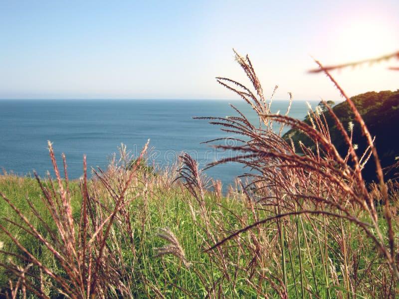 Sunset at Japanese sea.Summer landscape royalty free stock photos