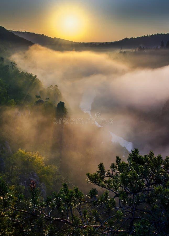 Sunset on Jihlava. Sunset on river Jihlava in fog royalty free stock photography
