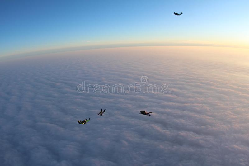 Skydiving. Sunset jump. Skydivers are above pink clouds. Sunset jump. Four skydivers are flying above pink clouds. Three skydivers are flying near each other stock images