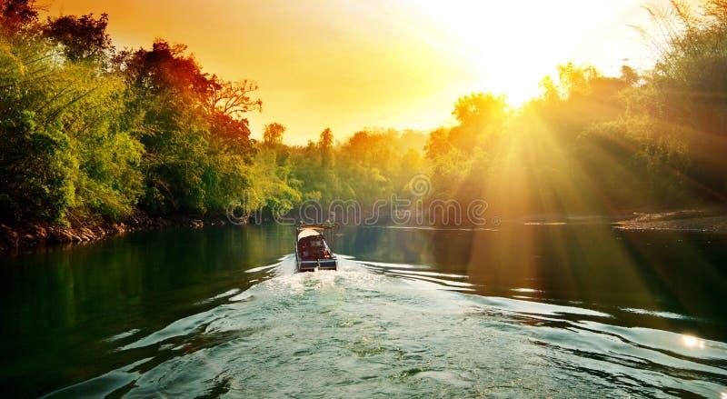 Sunset in jungle stock photo