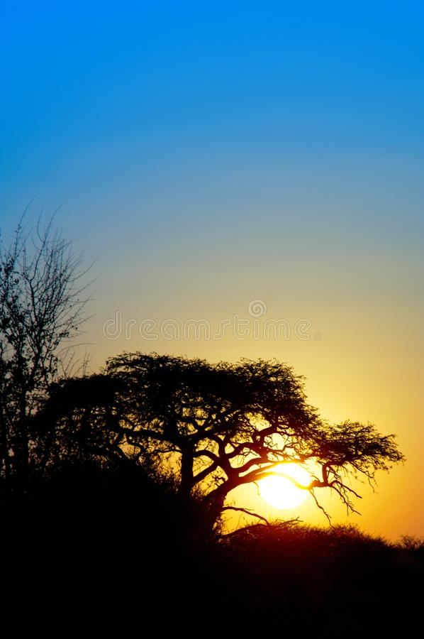 Sunset In The Kalahari Stock Photo