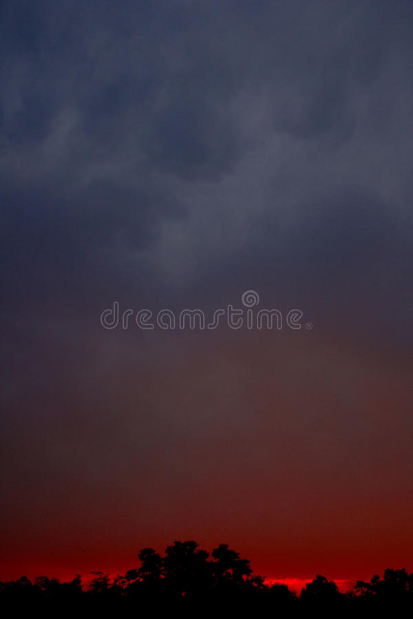 Sunset in Kanha royalty free stock photos