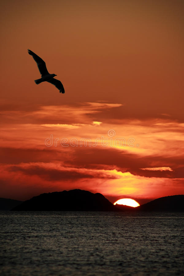 Sunset on Kornati royalty free stock photography