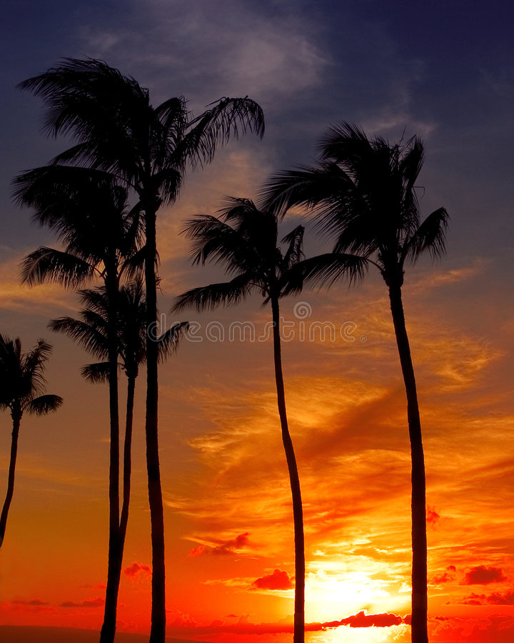 Sunset at lahaina stock image