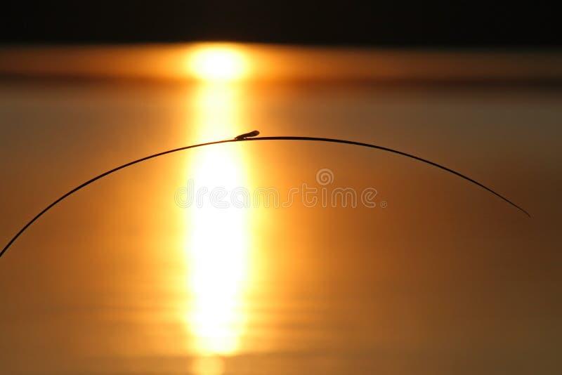 Sunset On The Lake Stock Photography