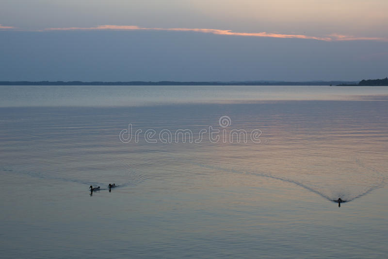 Download Sunset at the lake stock image. Image of outdoor, lake - 25821865
