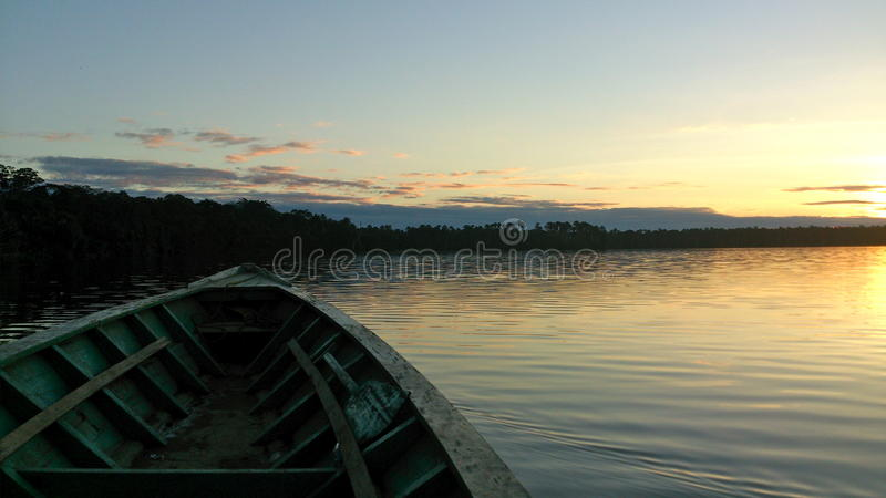 Sunset on a lake in the Amazonas Jungel, Peru. A beautiful trip by boat in a lake in the middel of the jungel in Peru royalty free stock image
