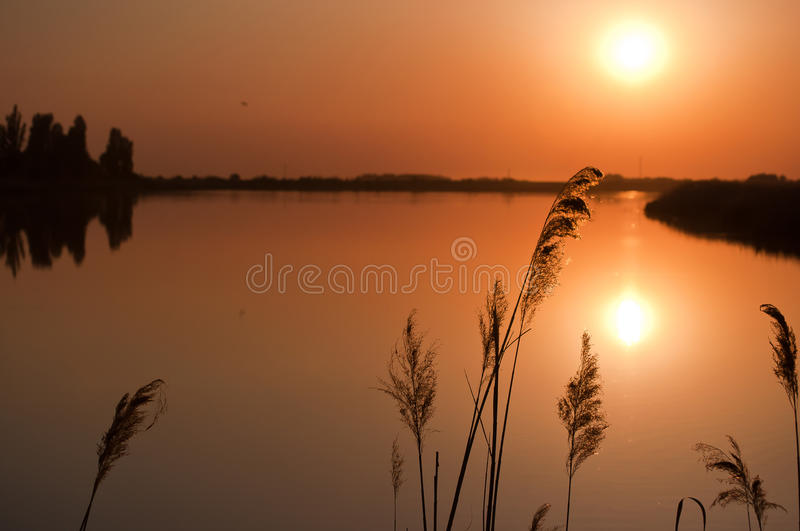 Sunset lake stock photos
