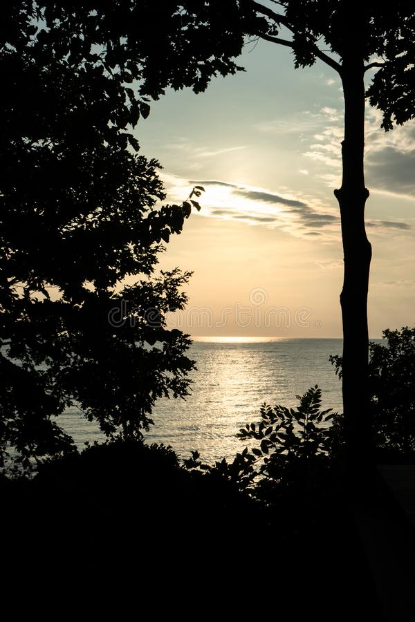 Sunset in the lake behind the trees royalty free stock photography