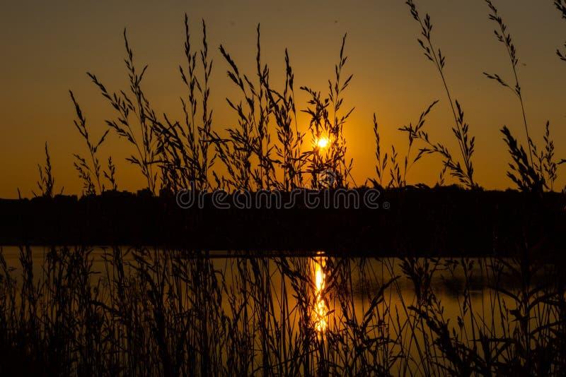 Sunset on the lake. Evening royalty free stock photo