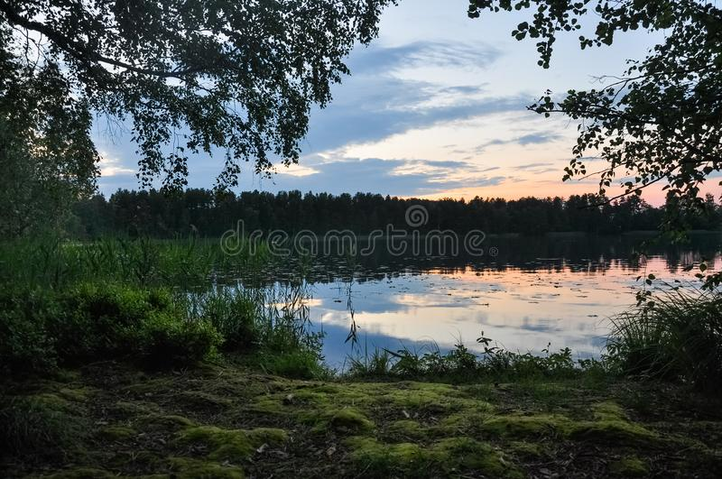 Sunset on the lake in evening twilght. Reeds on the coast. Summer rural landscape. Sunset on the lake in evening twilght. Reeds on the coast. Summer rural royalty free stock photos