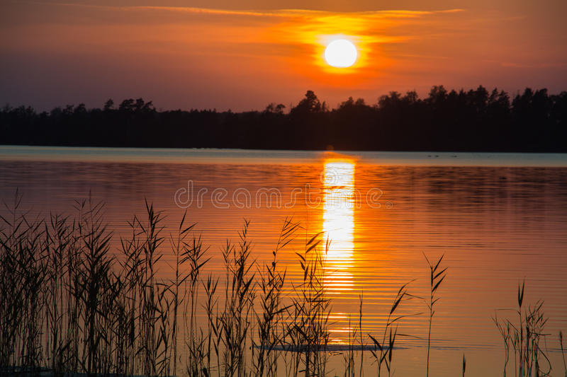 Sunset by a lake royalty free stock image