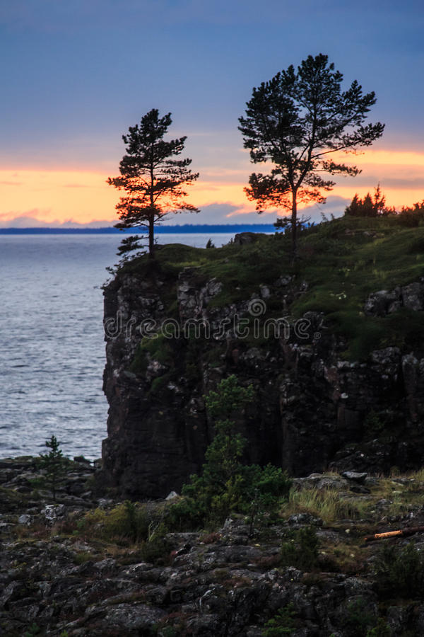 Sunset on the lake and trees. Sunset on the rocky shore of the lake royalty free stock images