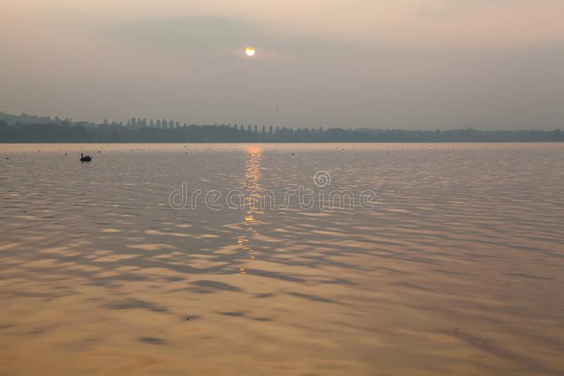 sunset in the lake of Varese - Italy lombardy. royalty free stock photography