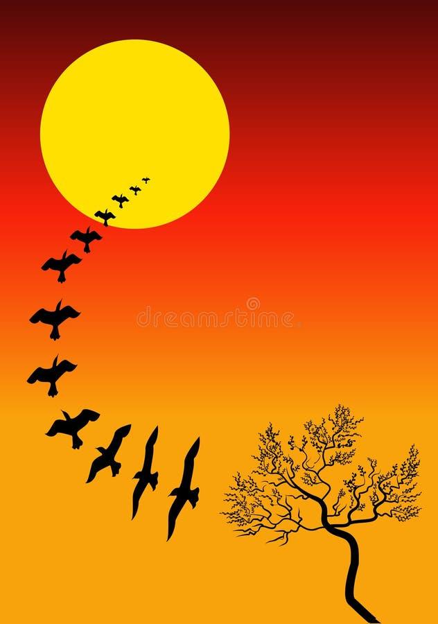 Sunset landscape vector illustration