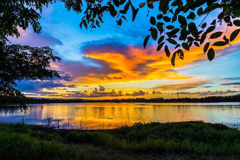 Sunset Landscape with Clouds and Tree royalty free stock photo