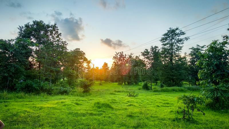 Sunset Landscape in green Nature. Greaa, grass, greenary, natural, cloud, sky, blue, trees, beautifulsunset, clouds, skyand, skyandclouds, electric royalty free stock photography