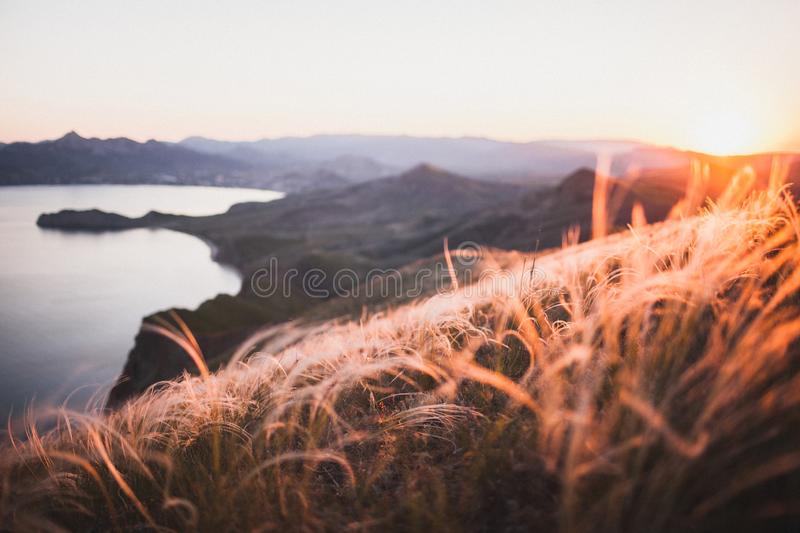 Sunset landscape of sea coast and spring field hill with feather grass. Sunset landscape overlooking the hilly coastal line in Crimea, Koktebel..Incredible royalty free stock photos