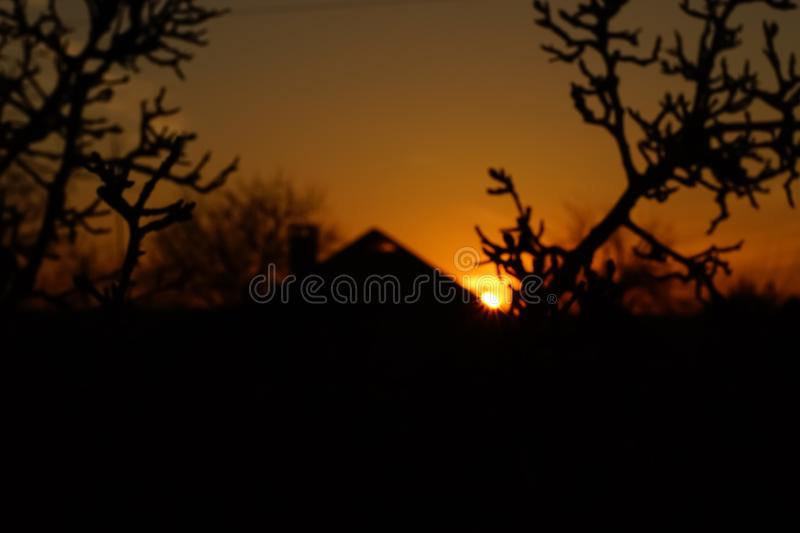 Sunset landscape in the village. Sun with rays over the house roof in dark orange sky. Black silhouettes tree branches and rural royalty free stock photos