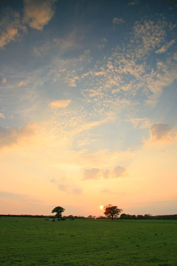 Sunset landscapes stock image