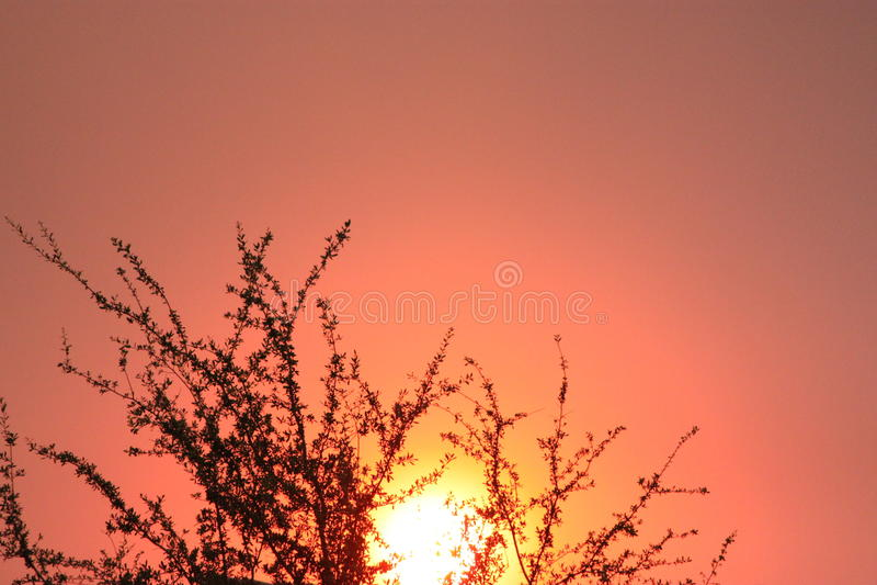 Sunset. In Las Vegas, NV stock photo