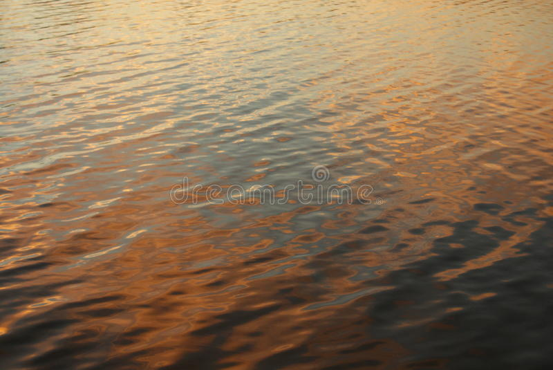 Sunset Light on Lake Ripples royalty free stock images