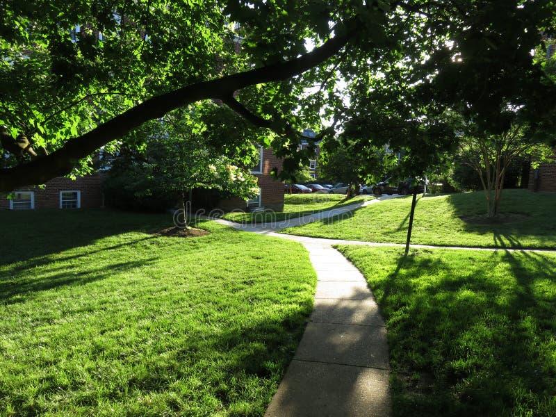Sunset Light in the Neighborhood royalty free stock photo