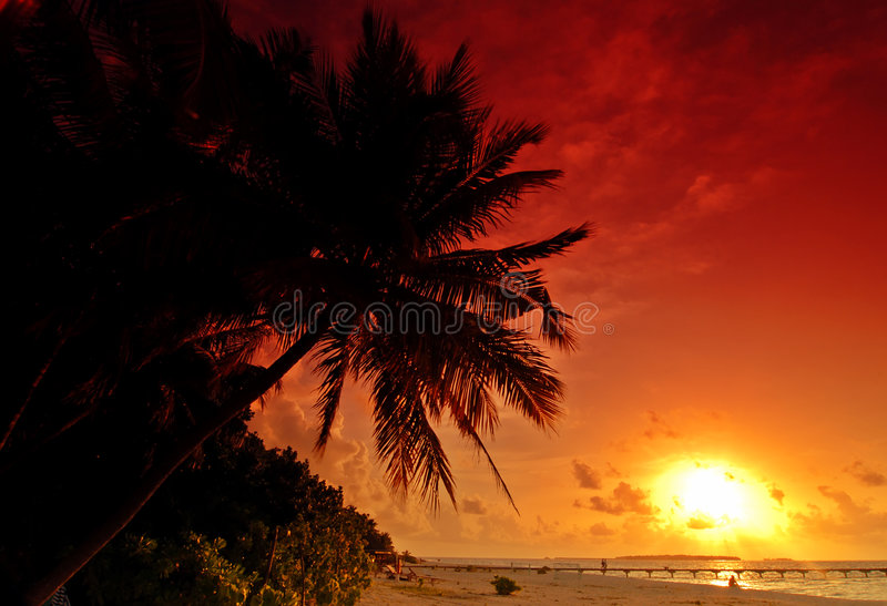Download Sunset in the Maldives stock photo. Image of orange, sunset - 8758554