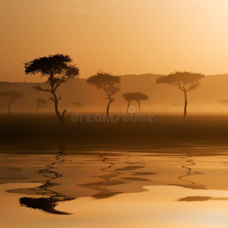 Sunset in Massai Mara. A beautiful sunset at Massai Mara, Kenya. Reflection on water surface