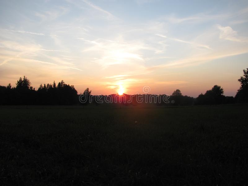 Sunset on a meadow at the forest stock image