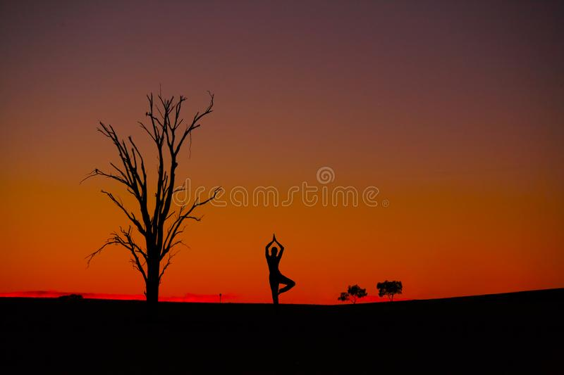 Sunset Meditation Vriksasana stock images