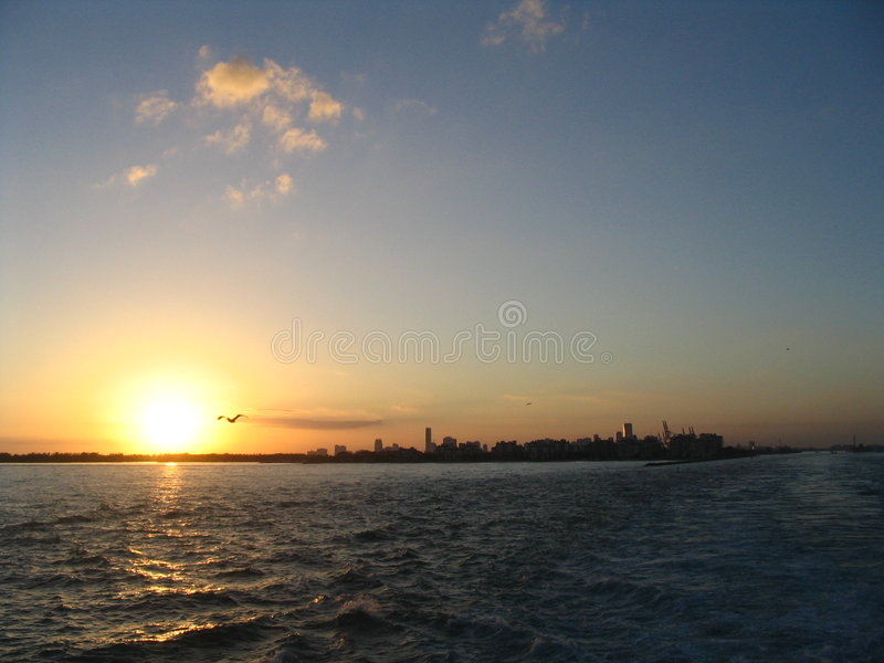 Sunset in Miami royalty free stock photo