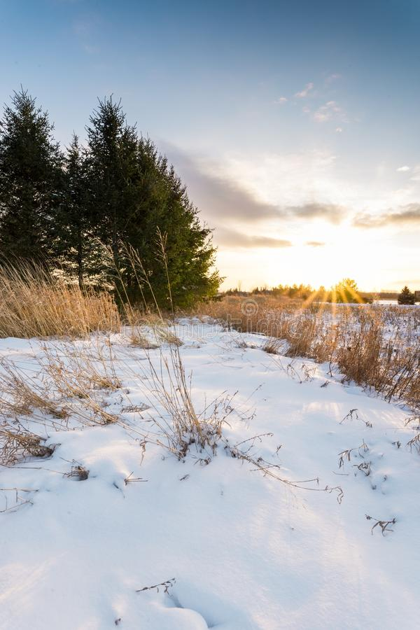 Sunset on a Michigan winter royalty free stock photography