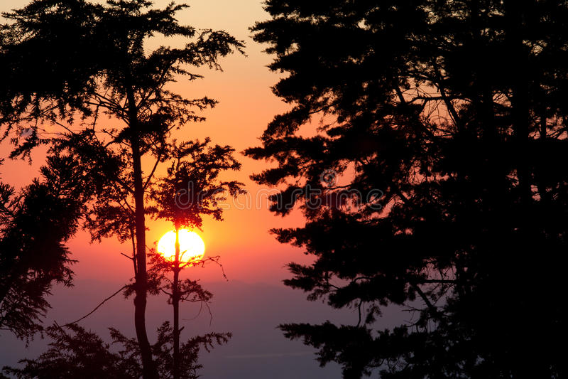 Download Sunset At Monteverde Cloud Forest Reserve Stock Photo - Image: 19654950
