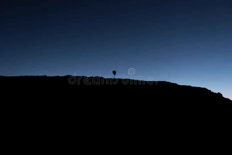 Sunset on Moon Island. Looking up towards the silhouette of a tree on a hill during sunset on Moon Island in Lake Titicaca on a clear, cloudless evening stock images