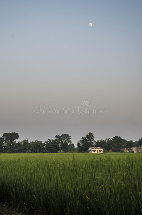 Sunset Moon. A view of rising moon at the time of sunset in the plains of Nepal royalty free stock images