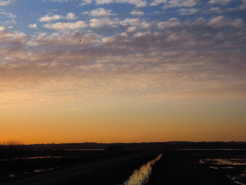 Sunset in the moorland Teufelsmoor in Germany near artist village Worpswede stock photo