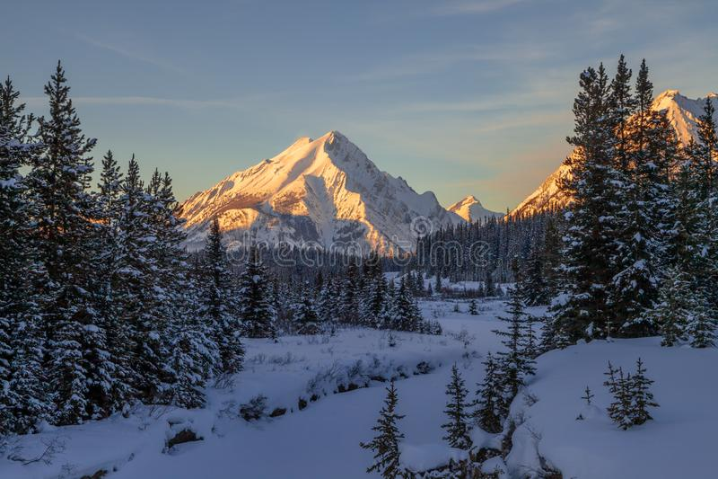 Sunset on mount Nestor in Spray Valley Provinpark i Kananaskis, Alberta arkivbilder