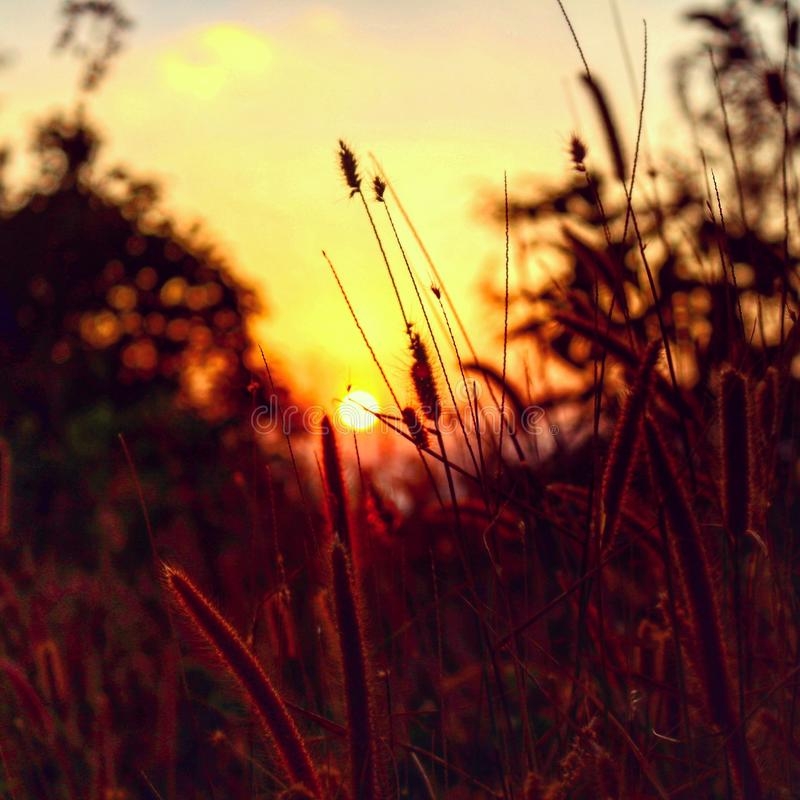 sunset on the mountain royalty free stock photography
