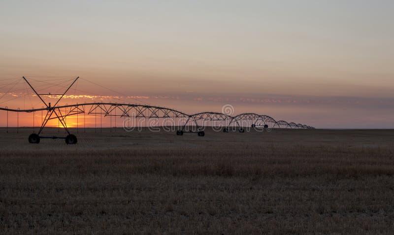 Sunset nära Warman, Saskatchewan, Kanada arkivfoton