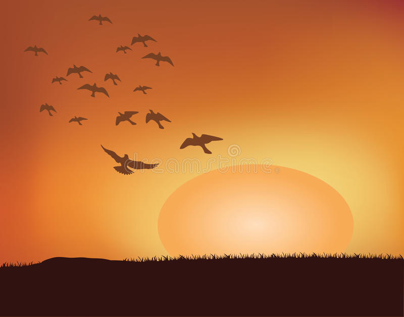 Sunset stock illustration