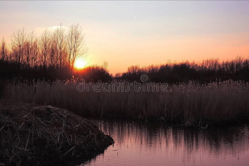 Sunset in Nieuw-Vennep royalty free stock images