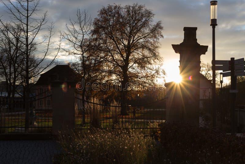 sunset in november autumn boulevard royalty free stock photos