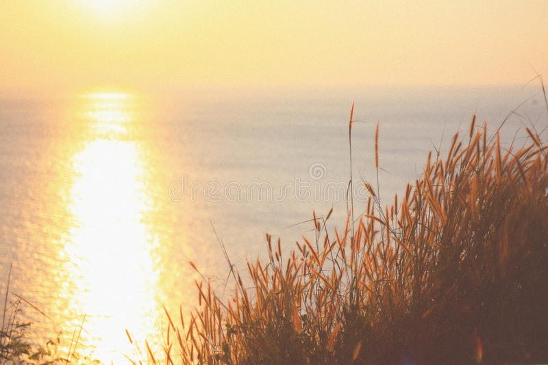 Sunset on the ocean. royalty free stock images